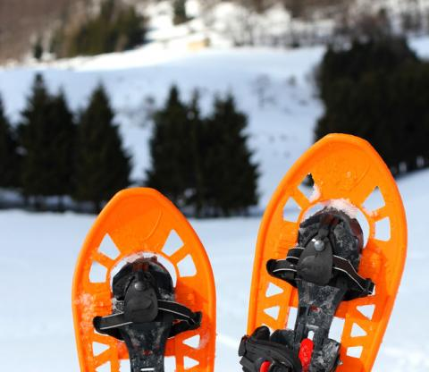 photodune-7065653-two-snowshoes-for-walking-on-the-soft-snow-s
